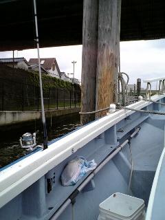 キス・アナゴのリレー船